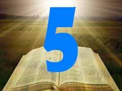 numerology bible number 5
